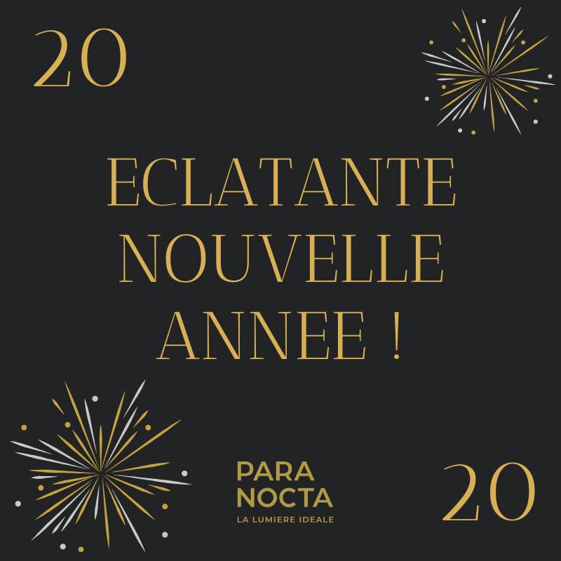 L'équipe PARANOCTA vous souhaite une année 2020 radieuse